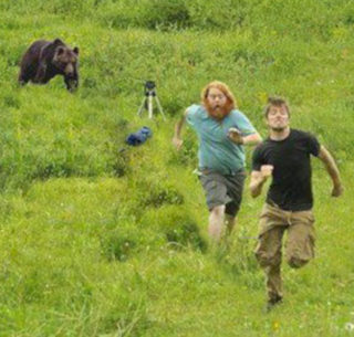 Bear Chasing Men